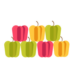 colorful sweet bulgarian peppers stand in neat vector image