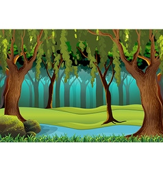 Scene with trees in the jungle vector image vector image