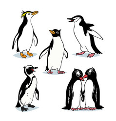 cute cartoon penguins of different types vector image