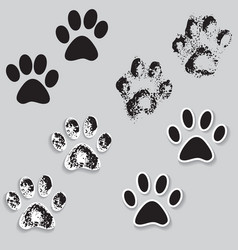 Animal cat paw track feet print icons with shadow vector
