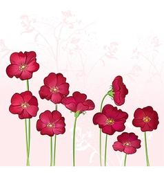Red Growings Wild Flowers vector image