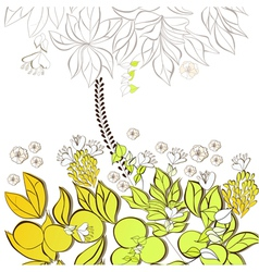 gift card with floral element vector image