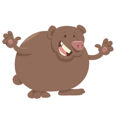 cartoon bear animal character vector image vector image