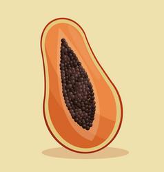 Papaya nutrition healthy image vector
