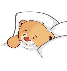 A stuffed toy bear cub vector image