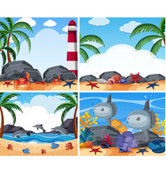 Four ocean scenes with animals and beach vector