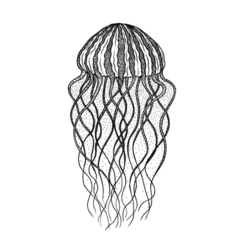 Jellyfish in line art style Design for coloring vector image vector image