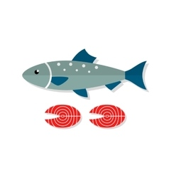 Salmon fish flat vector