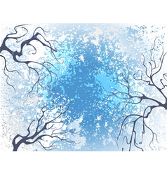 Winter branches vector image vector image