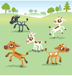Set of calf cow vector
