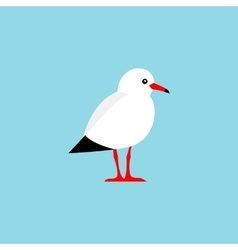 Bird isolated on a blue background vector