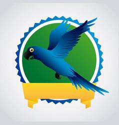Blue macaw design vector