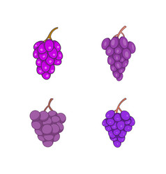 grapes icon set cartoon style vector image vector image
