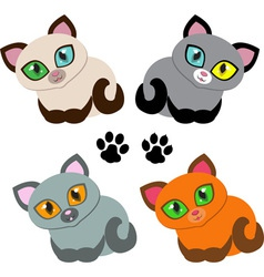 kitties vector image