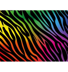 Rainbow zebra background vector image vector image