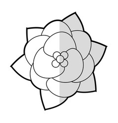 Flower floral decoration image vector