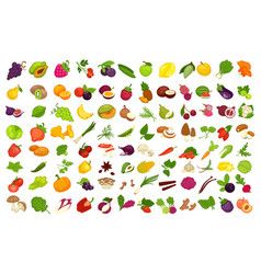 Fruits vegetables berries and spices or vector