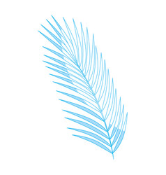 Leaves palm plant vector