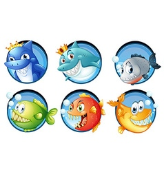 Sea animals on round badges vector image vector image