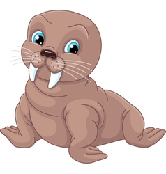Young walrus vector