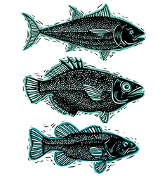 Set of fishes different underwater species organic vector