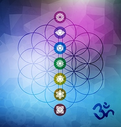 Sacred geometry flower of life with chakra icons vector