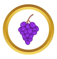Bunch of wine grapes icon vector image vector image