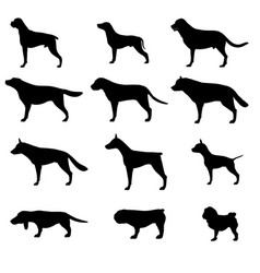 Dog silhouette icon pet set isolated animal black vector