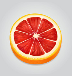 grapefruit fruit slice realistic 3d vector image