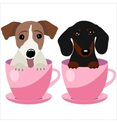 Jack Russell Terrier and Dachshund dog in pink vector image vector image