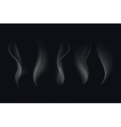 Set of White Transparent Cigarette Smoke Waves vector image