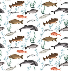 Colorful marine life seamless pattern vector