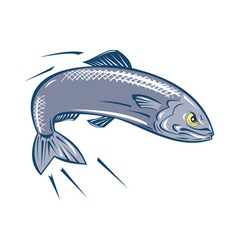 Angry sardine fish jumping vector
