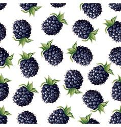 blackberry pattern vector image
