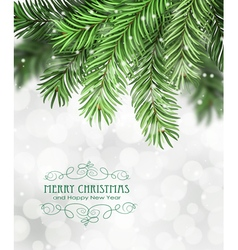 Christmas tree branches vector