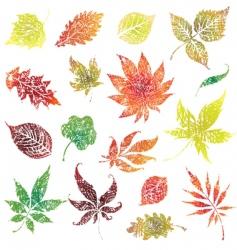grunge thanksgiving design vector image vector image
