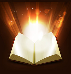 Holy and magic book vector