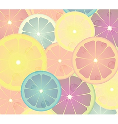 Lime cicles vector