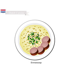 Erwtensoep with smoked sausage a traditional dish vector