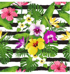 tropical flowers and leaves on striped background vector image