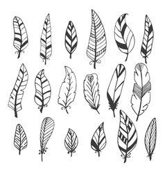 Ethnic feather set hand drawn collection vector
