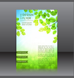 design of the flyer with leaves and sun vector image
