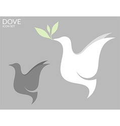 Dove vector image vector image