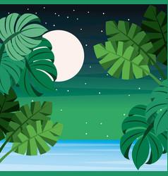 landscape tropical leaves palm sea full moon vector image