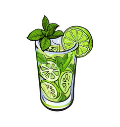 tall glass full of freshly squeezed lime juice vector image vector image