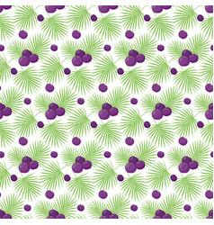 Acai berries seamless pattern vector