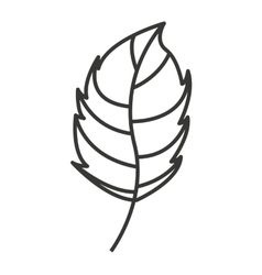 Nature leaf isolated icon design vector