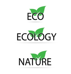 eco sign with green leaf vector image vector image