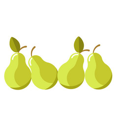 Green organic juicy pears with leaves isolated vector