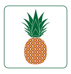 Pineapple with leaf icon color vector